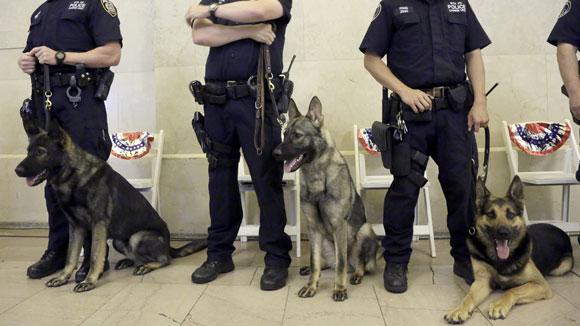 policedogs580
